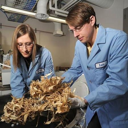 a photo of an man and woman looking at shredded wood